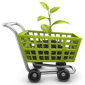 compra publica verde