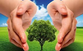 Evaluar la sostenibilidad