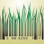 Las marcas sostenibles en las compañías top