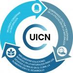 UICN, compromiso con la sostenibilidad del Mediterráneo