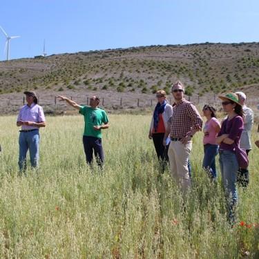 Visita de campo en Las Falces, Navarra
