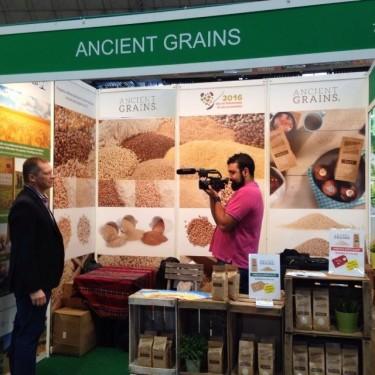 Entrevista_Ancient Grains
